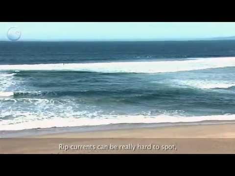 「離岸流的抓力」- The Grip of Rip Currents