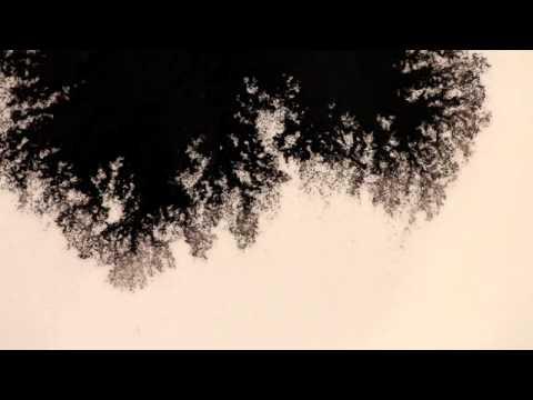 「國際水之日:水影畫」- Water ink