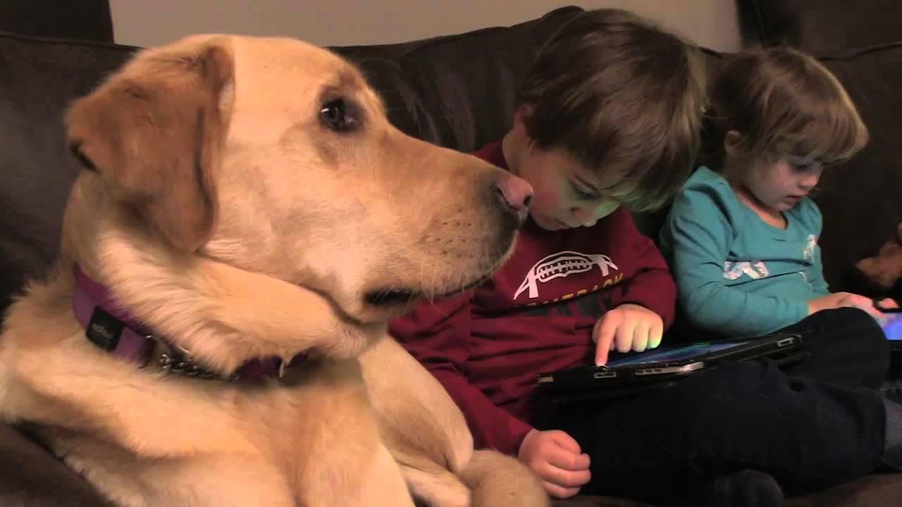 「重拾幸福--自閉症小男孩與他的狗狗」- Boy with Autism and His Dog