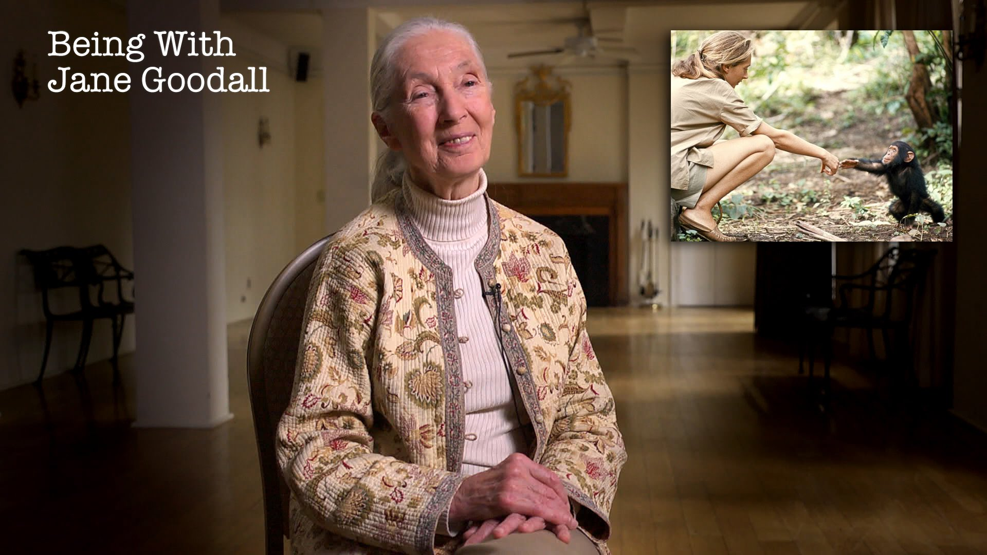 「和黑猩猩交心的人,珍‧古德」- Being with Jane Goodall