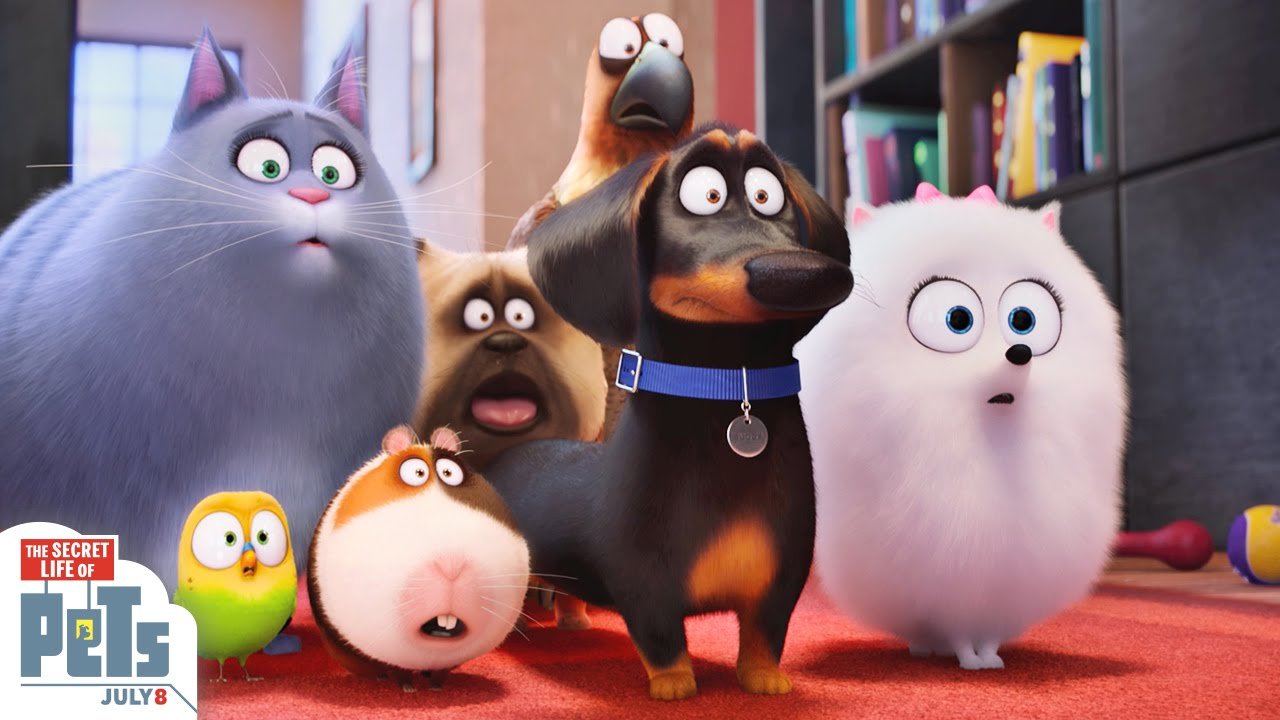 「《寵物當家》要來啦!」- The Secret Life Of Pets