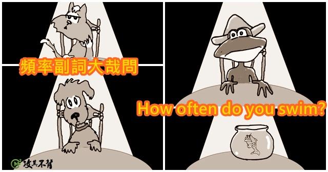 【希平方上課囉!】頻率副詞怎麼用?