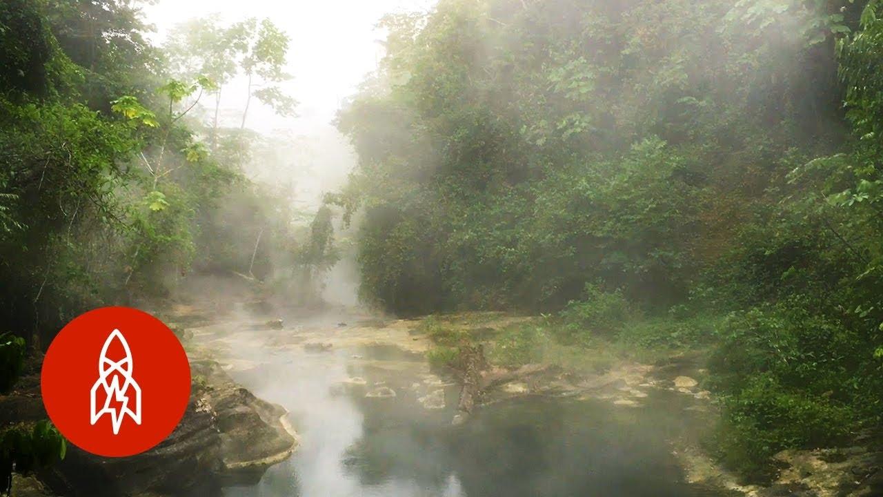 「深入亞馬遜:叢林裡的沸騰之河」- The Amazon's Boiling River Kills Anything That Enters